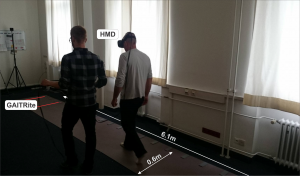 Analyses of Gait Parameters of Younger and Older Adults during (Non-)Isometric Virtual Walking